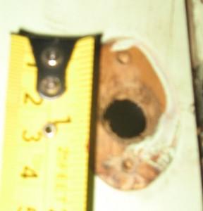 Upper Cabinet Hardware - qty(4)